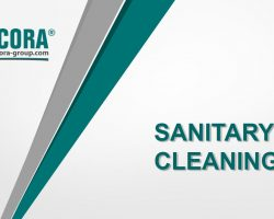 Sanitary Cleaning
